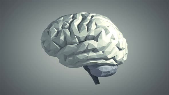 Thumbnail for Low Poly Brain – Gray