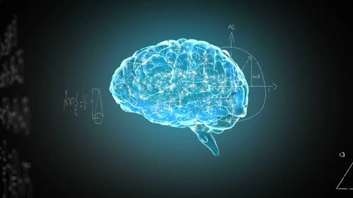 Animation of brain with technology and data processing