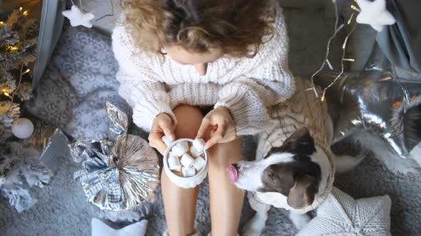 Thumbnail for Woman In Sweater Relaxing With Cup Of Hot Chocolate With Dog. Christmas Time
