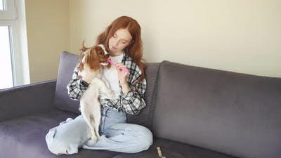 Young Woman Brushes the Teeth of Her Pet a Dog They are Sitting at Home on the Couch