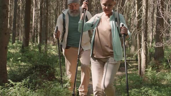 Thumbnail for Happy Aged Couple Walking in Forest