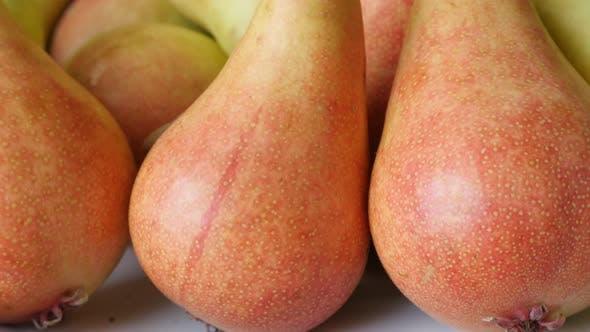 Fresh pile of European common pear fruit slow tilt 4K 2160p 30fps UltraHD footage - Tilting on Rosac