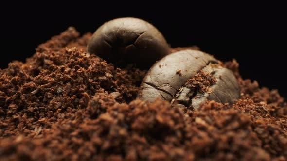 Whole Coffee Beans And Ground Coffee. Macro Shot.