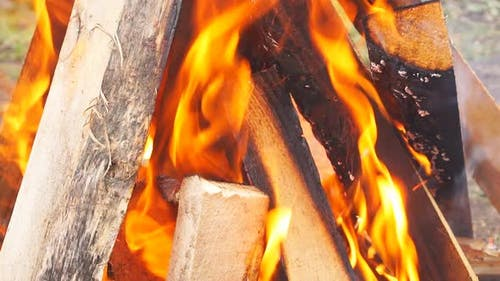 Close Up Shot of Touristic Campfire at Nature. Cooking Barbecue Outdoor.