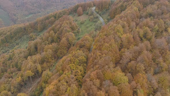 Thumbnail for Car on Road in The Middle of The Woods of The Balkan Peninsula During the Autumn