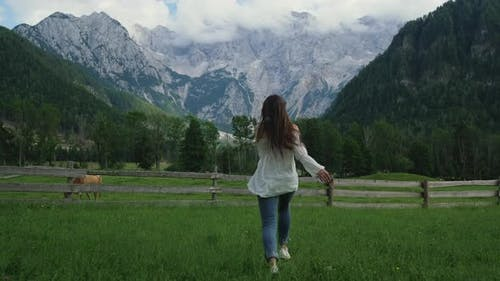 Ecotourism in Countries with Alps Mountains