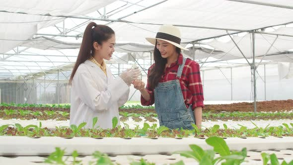 Asian scientist woman test solution chemical inspection soil in organic farm and show result.
