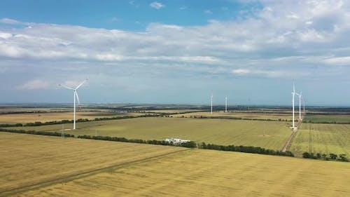 Windmills Generate Electricity in a Fields