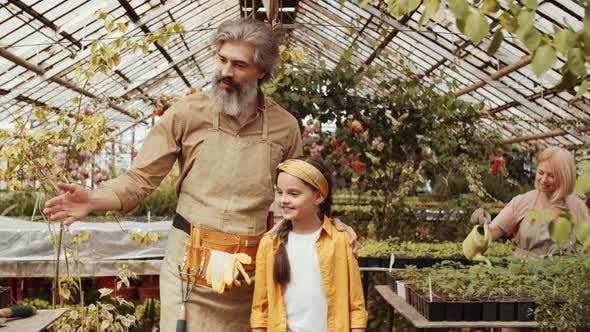 Thumbnail for Senior Farmer Telling about Plants to Little Granddaughter in Greenhouse