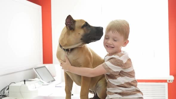 Happy Child Boy with Dog in Vet Clinic