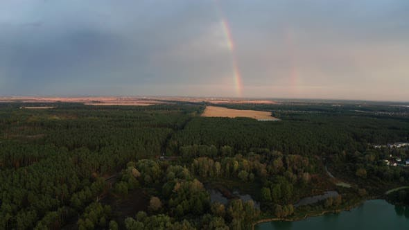Thumbnail for Rainbow Over the Forest at Sunset. Aerial View.