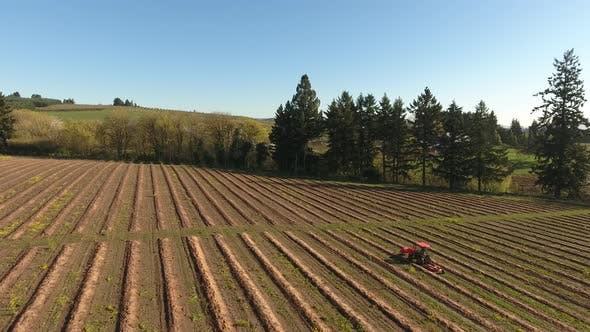 Thumbnail for Aerial view of tractor on farm driving down rows