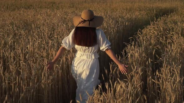 Thumbnail for Young Girl Running in Slow Motion Through a Wheat Field