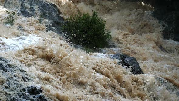 Thumbnail for Overflowing River Wild Waters