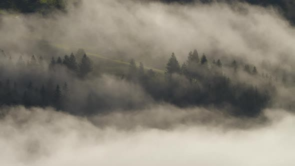 Thumbnail for Clouds and Mist in Mountain, High Peaks with Forest, Wonderful Morning Sunrise Natural Landscape