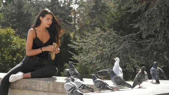 Thumbnail for Beautiful Young Girl Feeding Pigeons.