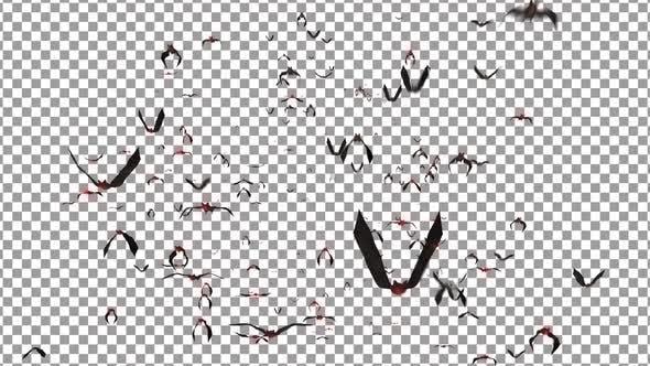 Thumbnail for Bats 01