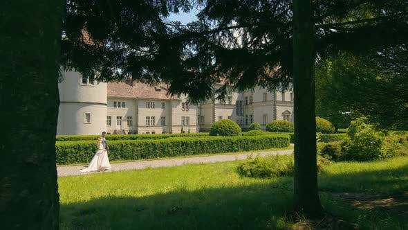 Thumbnail for Young Wedding Couple in Love Newlyweds Walking in a Fabulous Sunny Park on a Background of Green