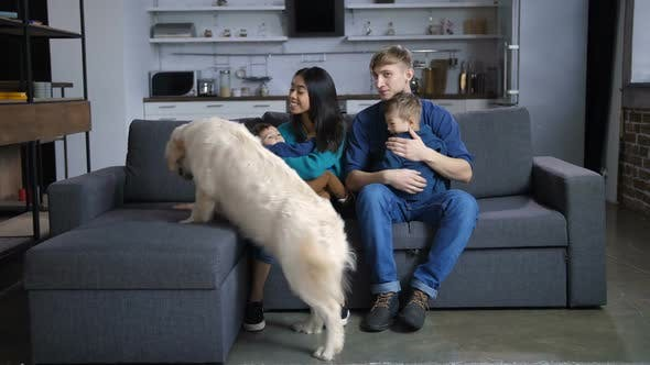 Thumbnail for Multi Ethnic Family with Dog Relaxing on Sofa