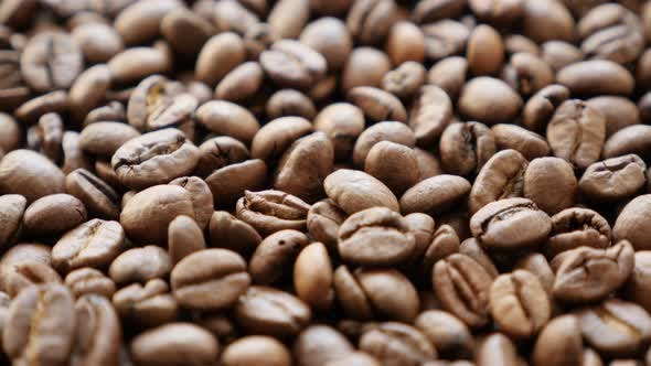 Arabica type coffee beans roasted and arranged slow tilt 4K 2160p 30fps UHD footage - High quality e