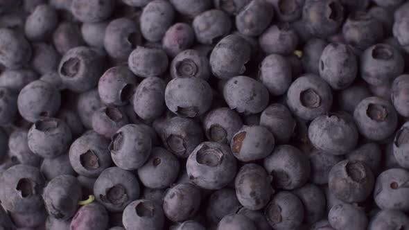 Thumbnail for Blueberry Rotating Background. Lot of Ripe Blueberries Close Up. Organic and Healthy Food.