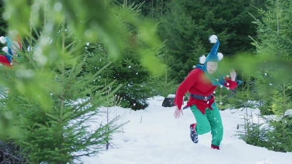 Thumbnail for Elves enjoying the winter