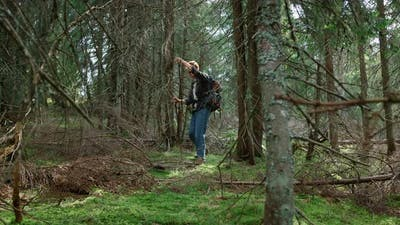 Man Walking with Trekking Poles in Green Forest