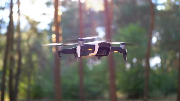Thumbnail for Drone with a Camera Hovers in the Air. Flies Above the Ground in the Forest