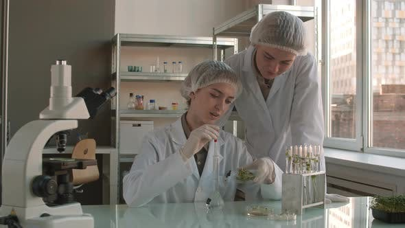 Thumbnail for Female Intern Practicing with Help of Professional Biologist