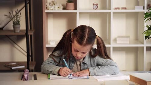 Primary Education Girl Studying Home Writing