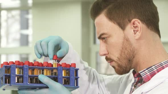Thumbnail for Serious Laboratory Assistant Carefully Examines Test Tubes with Assays