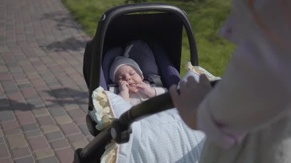 Thumbnail for Beautiful Woman Bent Over a Pram in the Park. The Lady Enjoying the Sunny Day with Her Baby Outdoors