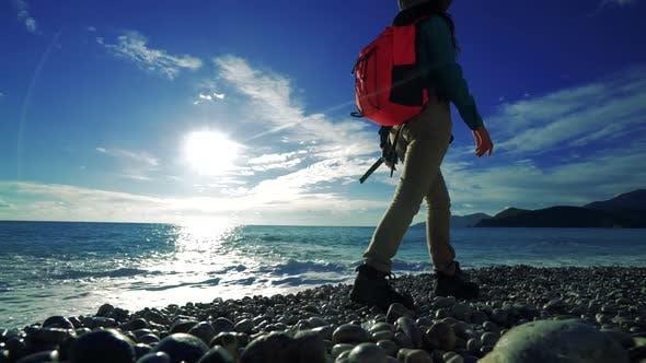 Thumbnail for Hiker Coast