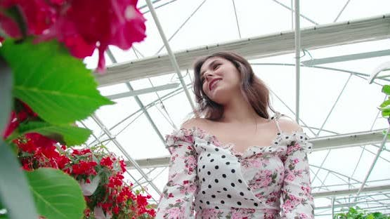 Young Woman in Dress Choosing Flowers at Greenhouse