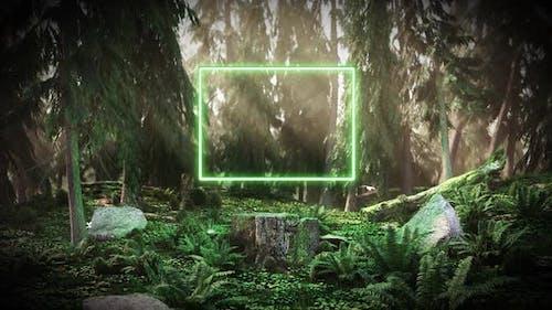 Morgendämmerung im Wald mit einem Neon Rechteck