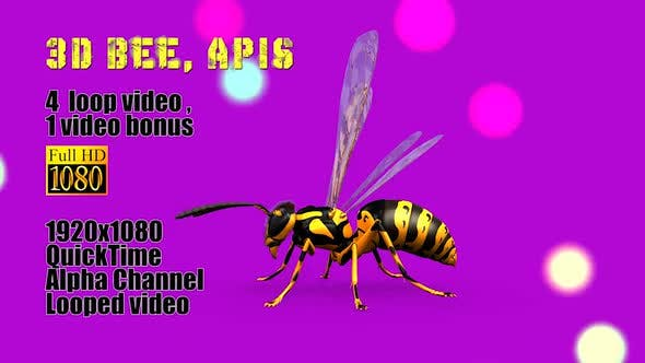 Thumbnail for Bee Apis