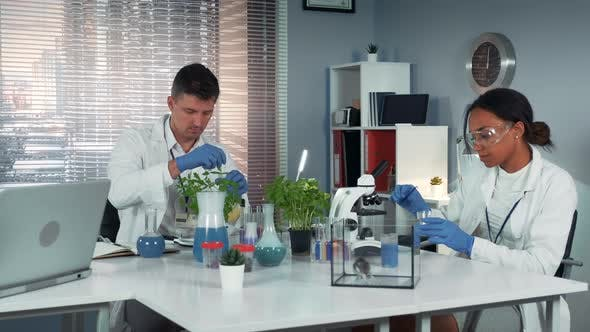 In Modern Laboratory Scientist Helping His Colleague To Conduct the Experiment By Preparing