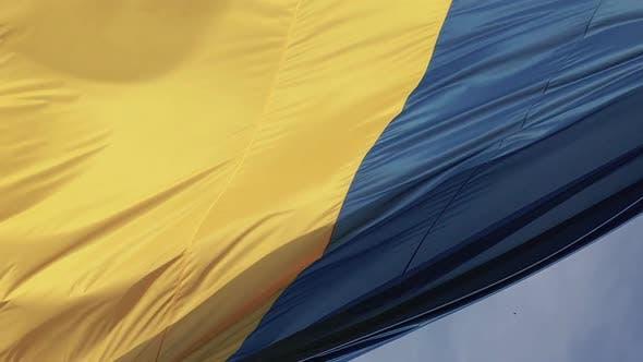 Thumbnail for Vertical Video National Flag of Ukraine