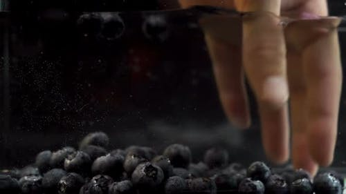 A Hand Delicately Grabbing Several Blueberries Drown in Water