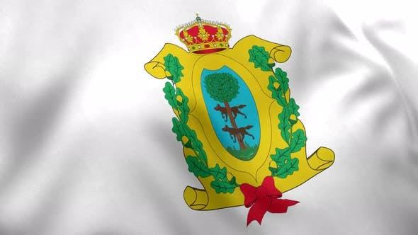 Durango Flag (Mexico) - 4K