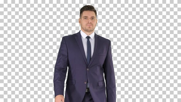 Thumbnail for Businessman walking isolated, Alpha Channel
