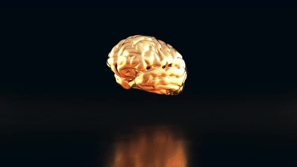 Thumbnail for 3D drop transforming into a golden brain