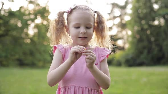 Thumbnail for Cute Little Girl with Pony Tails Picking Flower's Petals on Meadow