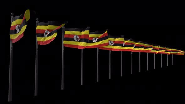 Row Of Uganda Flags With Alpha 4K