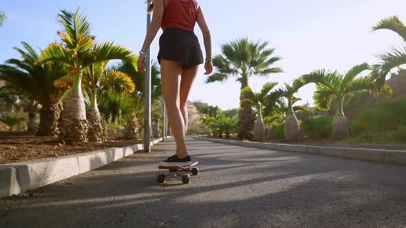 Thumbnail for Woman Ride at Sunset Smiling with Boards for Skate Board Along the Path in the Park with Palm Trees