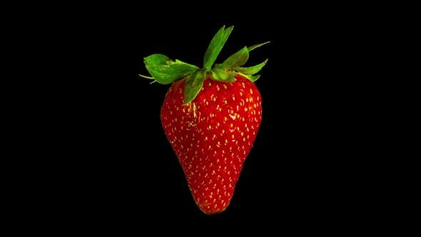 Thumbnail for Rotating Strawberry, Isolated Fruit with Alpha Matte