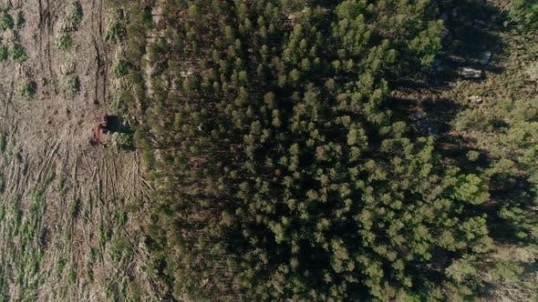 Thumbnail for Forest Harvester, Tree Harvester, Logging Equipment