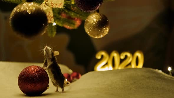 Thumbnail for Curious gray mouse touches a large red Christmas ball.
