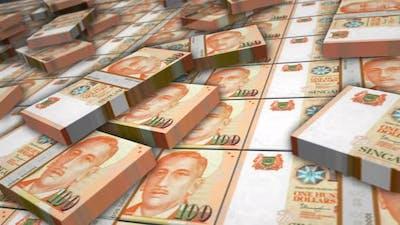 Singapore Dollar money banknote pack loop