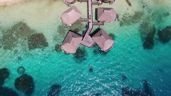 Thumbnail for Bungalows, Whitesand Beach, and Palm Trees, Bora Bora